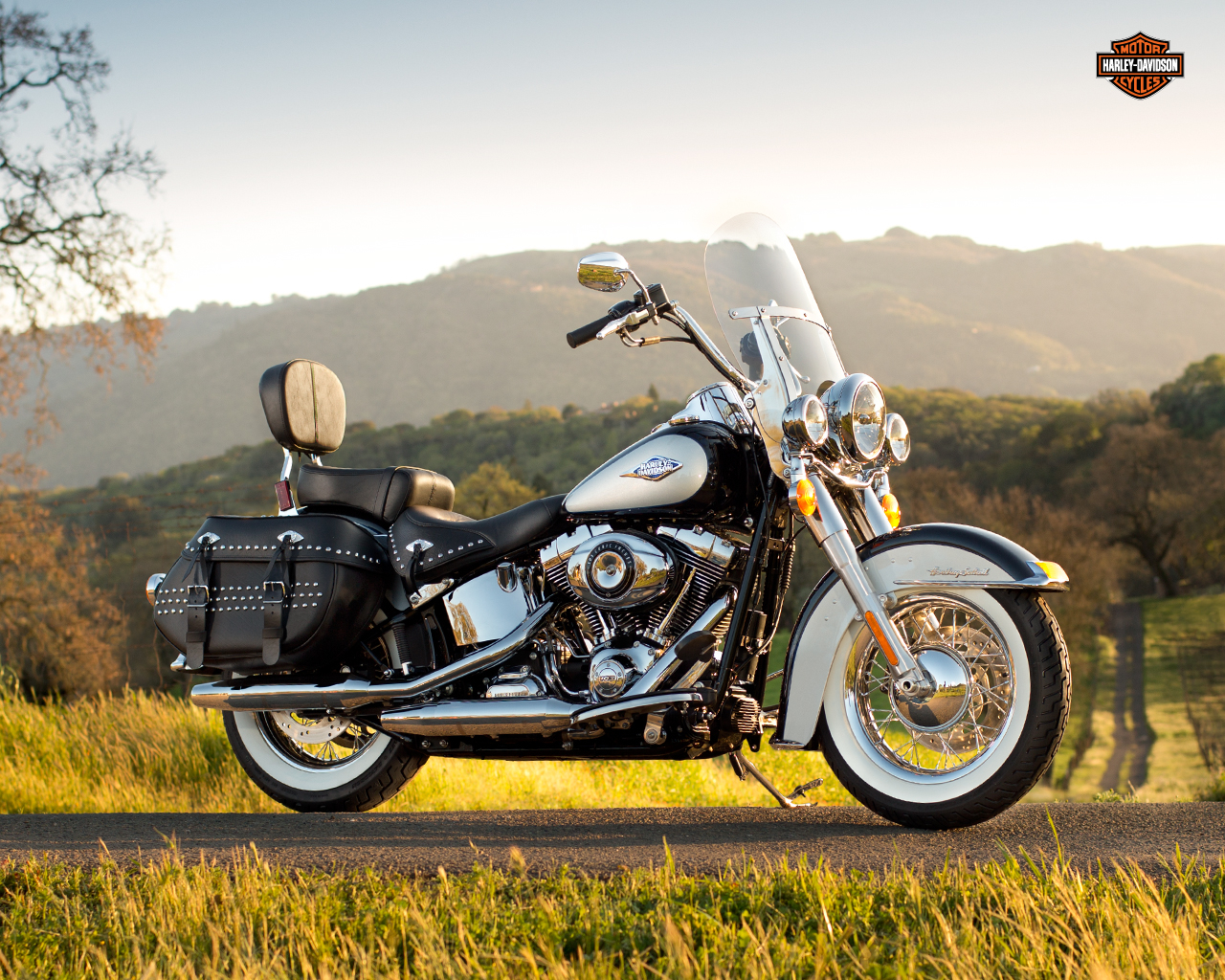 Lucky BAM Winner To Take Home New 2013 Softail Harley-Davidson